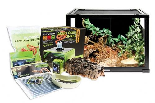 Advanced Corn Snake Kit